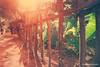 backyard fence by Naxief