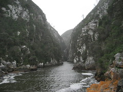 Storms River South Africa-125