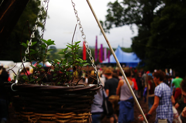 Green Man Festival - flickr: Amelia Wells
