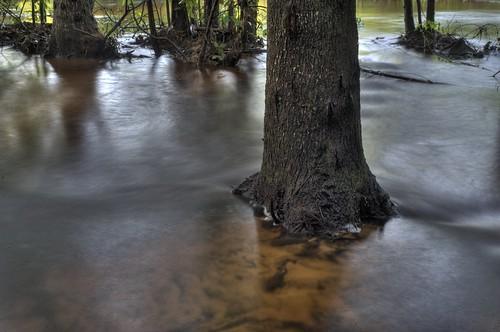 trees sunset red summer storm abandoned water rain creek forest river dark golf sand woodlands alabama swamp golfcourse shallow washout baldwin hdr foley gulfshores rainwater gully runoff