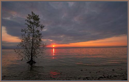 italy sun lake ex water sunshine clouds canon lago disco nice garda italia nuvole view roots sigma verona vista sole acqua 1020 rosso luce radici sirmione gmt riflesso hsm 550d