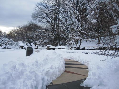 Jan 27 Winter Storm