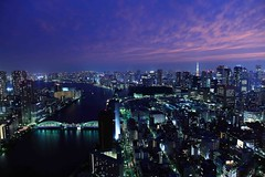 The Night View of Tokyo