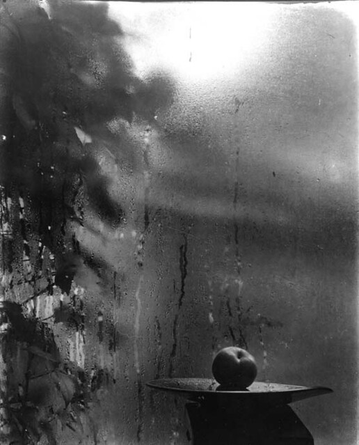 From the series, From the Window of My Atelier, by Josef Sudek 1940