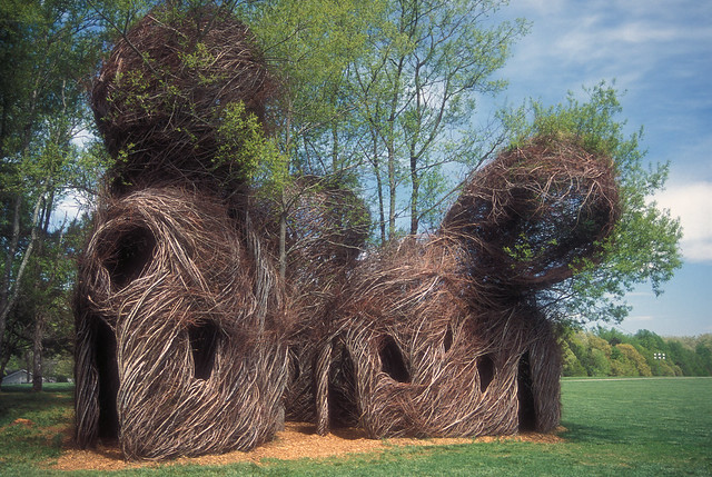 Trail Heads, 2005. Maple and sweet gum saplings, 30' high. North Carolina Museum of Art, Raleigh, North Carolina. Photo courtesy of North Carolina Museum of Art.