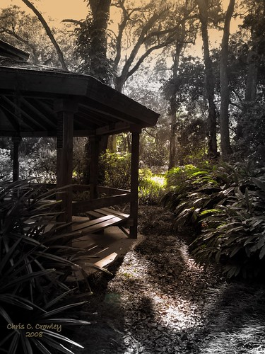 park light sunlight nature garden shadows scenic gazebo selectivecolor afternoonlight focalblackwhite sugarmillgardens itsmagical chriscrowley celticsong22 legendarypictures ambervsshadow picsforpeace adayinthelifeofours exploredoesntknowthatimalive gazeboshadows