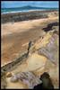 Rangitoto Heartland  - Happy Birthday SolarScot.... %-) by Reflective Kiwi %-)