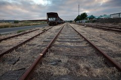 Tracks and Sunset