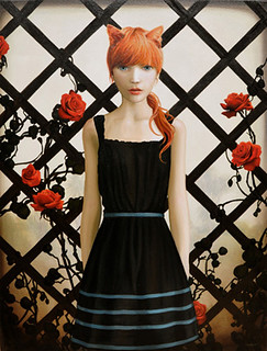 Melissa Haslam, Ginger Cat