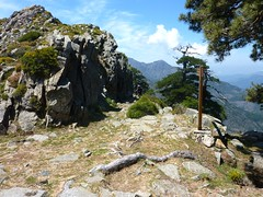 Sentier de la transhumance : arrivée à Bocca di Caprunale