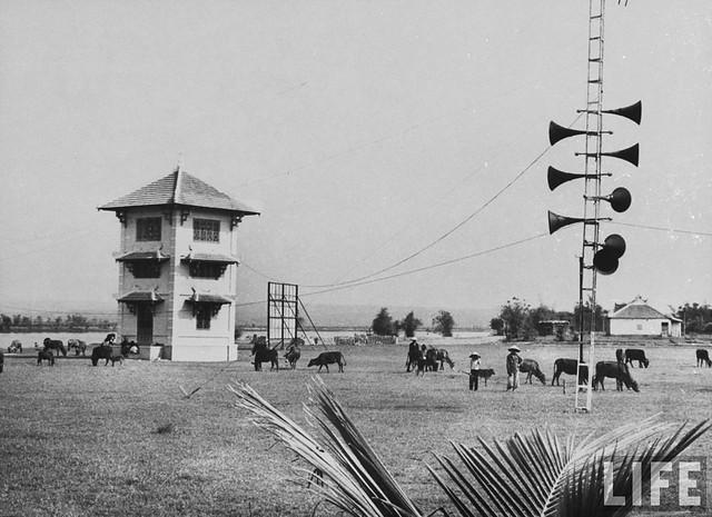 Vietnam's Demilitarized Zone (DMZ) - 1965