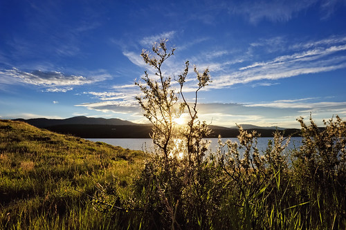 sunset summer foothills nature landscape nikon bravo sundown dusk reservoir loveland flare co carter shrub frontrange 2010 larimer sunstar carterlake montanus cercocarpus mountainmahogany nikon1735 d700
