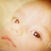 Charlott NC newborn infant artistic portrait session