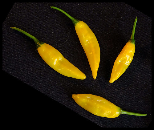 Hot Lemon Chillies