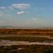 Shoreline-2010-08-10