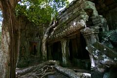 失落的神庙 / The lost temple