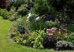 Great Tips And Advice For Giving Your Garden A Much Needed Lift.