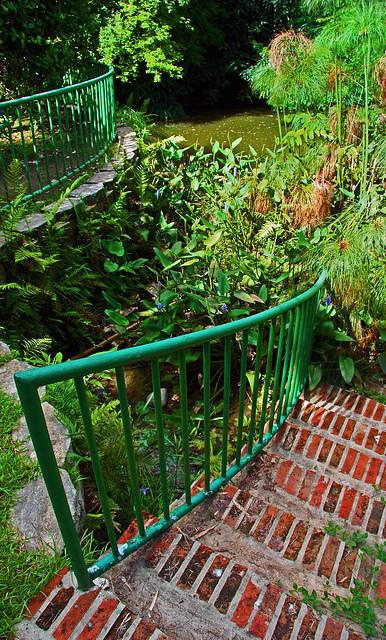Jardin botanico puerto rico botanical garden puerto for Jardin xanadu puerto rico