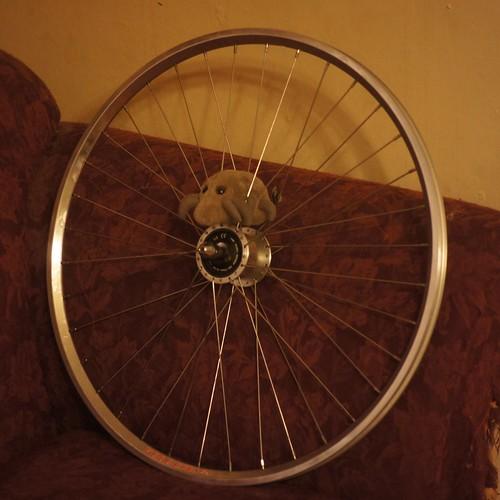 Wheel mite