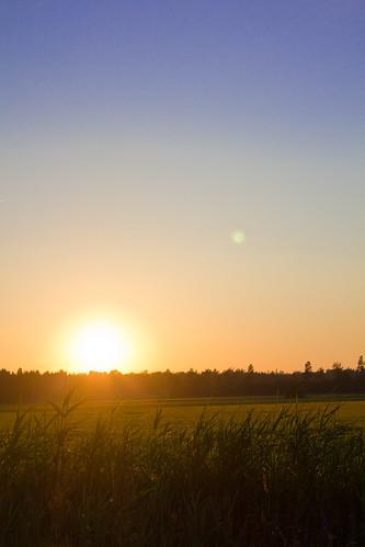 canon sweden farmland sverige treeline 2010 joakim åker johansson hallsberg 550d sädesfält sunsetsolnedgång alendri