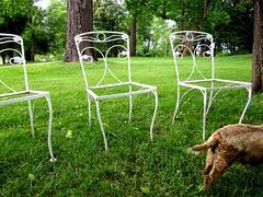 Chairs at Brampton