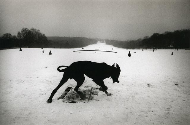 Hauts-de-Seine, Parc de Sceaux, by Josef Koudelka 1987