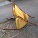 Broken chair by morven broken chair by philipstobbart broken chair