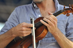 bowed string instrument, violinist, classical music, string instrument, violin, ukulele, viol, viola, fiddle, violist, string instrument,