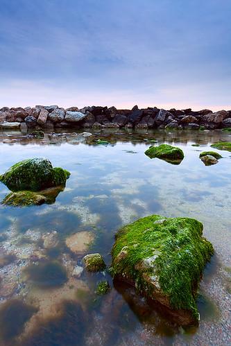 sea green sunrise landscape mare alba conero alga ancona alghe sirolo spiaggiaurbani