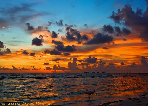 sunset sky gulfofmexico clouds florida ibis fortmyersbeach