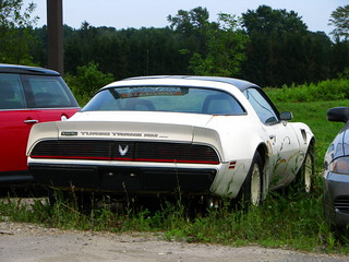 Pontiac Turbo Trans AM
