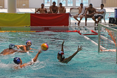 individual sports(0.0), swimming(0.0), swimmer(0.0), freestyle swimming(0.0), water & ball sports(1.0), water polo(1.0), sports(1.0), recreation(1.0), outdoor recreation(1.0), leisure(1.0), water sport(1.0),