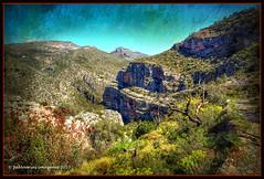 Barranc de l´Infern (Vall de Laguar)