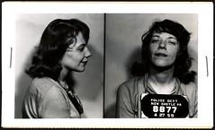 arrest warrant washington
