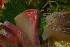 Hamachi sashimi - Shira Nui AUD18 special lunch set