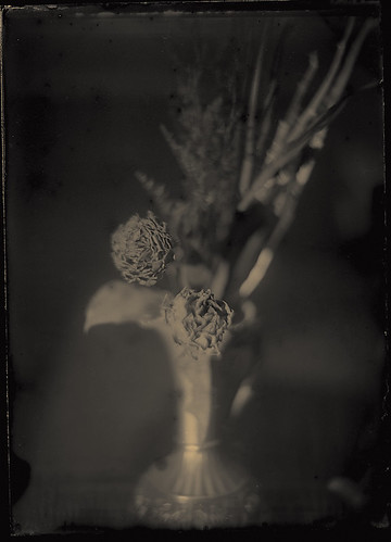 My first time attempt collodion  by alon96