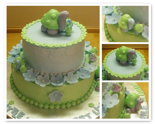 turtle baby shower cake flickr photo sharing