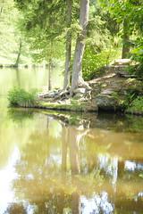 Lake - Photo of Berg