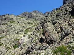 Remontée de la Haute Lonca : la crête Custole - Ghjarghjole en RD au-dessus de la Lonca