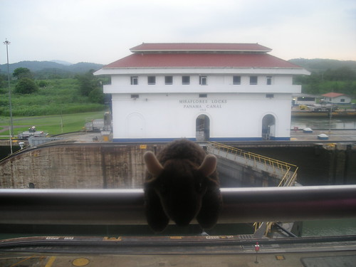 Buddy at the Panama Canal.