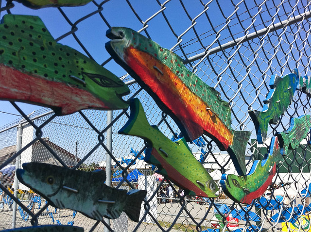 Fishy fence art