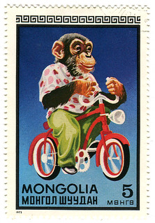 Mongolia postage stamp: chimp on bicycle