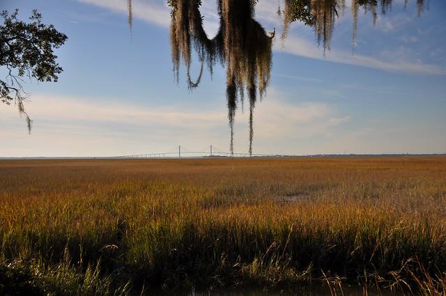 Marshy Fields of Jekyll Island by Flickr CC Clinton Steeds