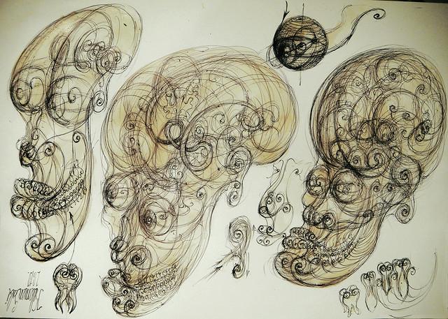 human vortex anatomy