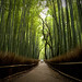 the path of bamboo, revisited #11 (near Tenryuu-ji temple, Kyoto) by Marser