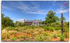 Garden of Boone Hall Plantation