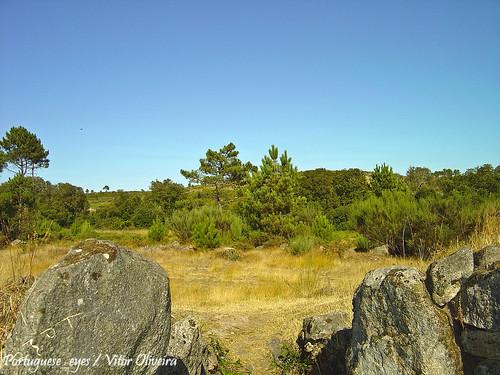 Dolmen da Orca dos Juncais - Portugal