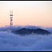 Sutro Tower by bats...