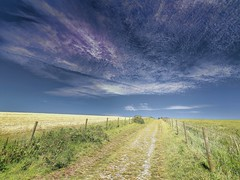 Ditchling Beacon to Stanmer by Two Routes