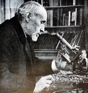 """Ramón y Cajal"""